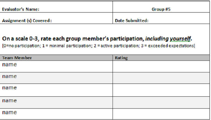 9+ Sample Group Evaluation Forms