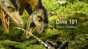 Dino 101 , University of Alberta